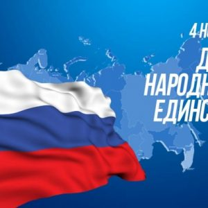Поздравление председателя Общественной палаты Санкт-Петербурга с Днём народного единства