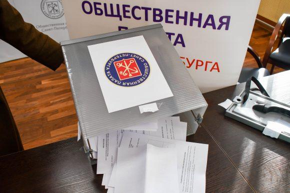 Санкт-Петербург в новом составе Общественной палаты РФ будет представлять Кристина Федосеева