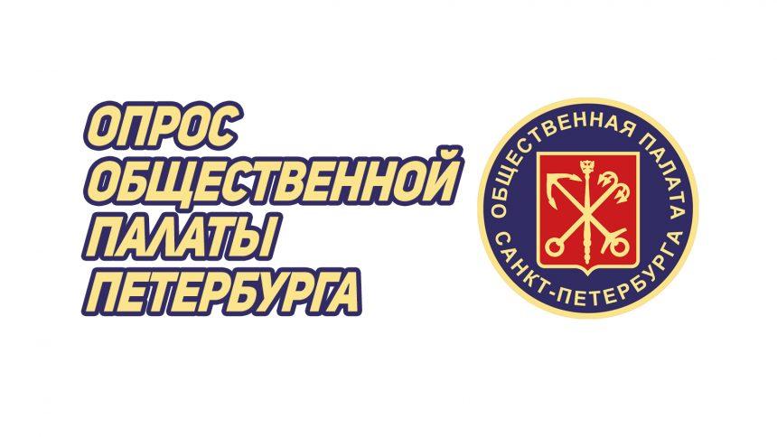 В Общественной палате запустили мониторинг качества дистанционного обучения в Петербурге