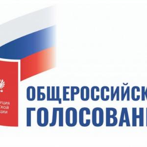 Члены Общественной палаты выразили свое отношение к поправкам к Конституции Российской Федерации